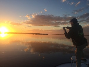 Steve, from Southern Culture on the Fly hooked up on an early morning tailing Redfish.