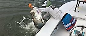 Tarpon Season action boat-side