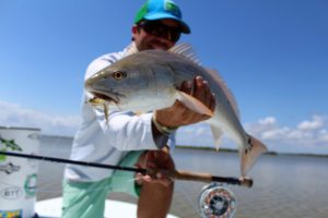 Mosquito-Lagoon-Redfish-on-Fly